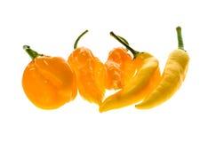 Olik variation av gula varma peppar - en grupp av chilies, Royaltyfri Foto