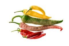 Olik variation av varma peppar eller chilies som isoleras på vit Royaltyfri Foto