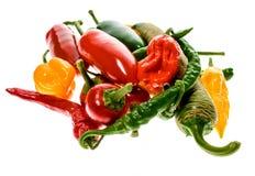 Olik variation av varma peppar eller chilies som isoleras på vit Arkivbild
