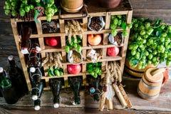 Olika ölingredienser Royaltyfria Bilder