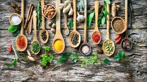 Olika örter och kryddor för att laga mat på gammalt träbräde