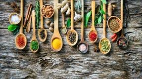Olika örter och kryddor för att laga mat på gammalt träbräde royaltyfri foto