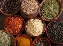 Olika bunkar av kryddor royaltyfri foto