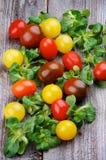 Olika Cherry Tomatoes royaltyfria foton