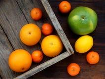 Olika citrusfrukter i en träask: tangerin apelsiner, raring, citron ovanför sikt Fotografering för Bildbyråer