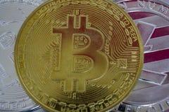 Olika crypto-valutor mynt Världsomspännande cryptocurrency och digitalt betalningbegrepp royaltyfria bilder