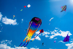 Olika drakar som flyger på himlen Arkivfoto