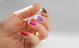 Olika färger av spikar polermedel Den kvinnliga handen med målat spikar, varje i en olik färg royaltyfria bilder