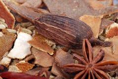 olika färgrika kryddor Royaltyfri Foto