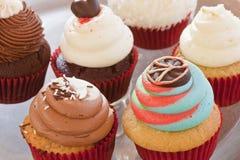 Olika färgrika muffin royaltyfria foton