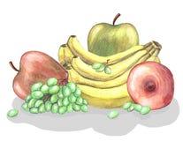 Olika frukter - banan, druva, äpplen vektor illustrationer