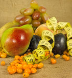 Olika frukter och cm closeup Arkivbild