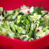 Olika gröna grönsaker, sallad i röd platta Arkivfoton