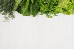 Olika gröna kärvar gör grön för vårsallad på vit träbakgrund, den bästa sikten, dekorativ ram Royaltyfri Foto