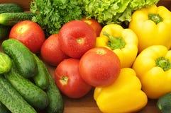 olika grönsaker Royaltyfri Fotografi