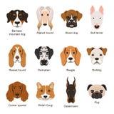 olika hundar Isolat för vektorillustrationuppsättning på vit vektor illustrationer