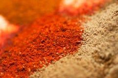 olika indiska kryddor för curry Arkivfoto