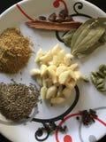 Olika indiska kryddor som vi använder dagligen royaltyfri foto