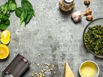 Olika ingredienser för italiensk pesto Royaltyfri Fotografi