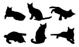 olika katter royaltyfri illustrationer