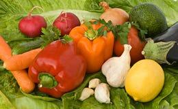 olika klara salladgrönsaker Arkivbild