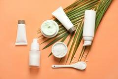 Olika kosmetiska produkter för hudomsorg med det gröna bladet Fotografering för Bildbyråer