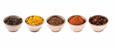 olika kryddor arkivfoto