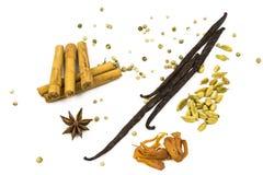 Olika kryddor 4 Arkivfoton