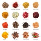 Olika kryddor royaltyfri fotografi