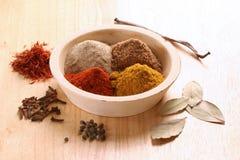olika kryddor Fotografering för Bildbyråer