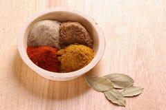 olika kryddor Royaltyfri Foto