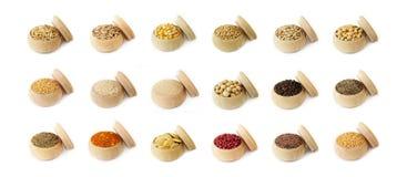 olika kryddor för bönakornörtar royaltyfri fotografi