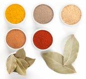 Olika kryddor i bunkar som isoleras på white. Royaltyfria Bilder