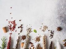 Olika kryddor i exponeringsglasprovr?r och nya ?rter p? gr? bakgrund St?ll in av olika kryddor, och ?rter l?gger framl?nges royaltyfria bilder