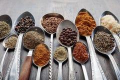 Olika kryddor i skedar fotografering för bildbyråer