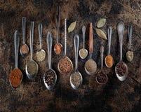 Olika kryddor i skedar på en tappningbakgrund Royaltyfri Bild