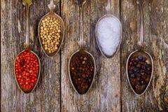 Olika kryddor i träskedar på bakgrund för mörk brunt Olika typer av paprika och pepparkornet Arkivbilder