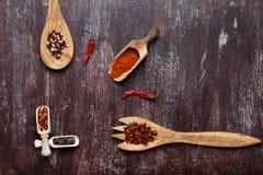 Olika kryddor i träskedar på bakgrund för mörk brunt Olika typer av paprika och pepparkornet arkivfoto