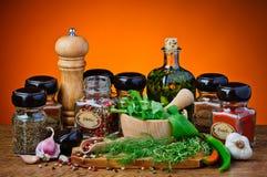 Olika kryddor och örter Arkivfoton