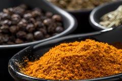 Olika kryddor och örter i skedar eller bunkar på en träbrunt Royaltyfri Bild