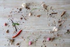 Olika kryddor och örter på träbakgrund med kopieringsutrymmelägenheten lägger bästa sikt för ramsammansättning arkivfoton