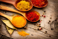 Olika kryddor och örter Royaltyfria Bilder