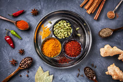 Olika kryddor på grungebakgrund Royaltyfri Foto