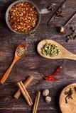 Olika kryddor på mörk brun bakgrund royaltyfri bild