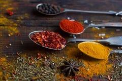 Olika kryddor på tappningskedar och mörk bakgrund, selektiv fokus Fotografering för Bildbyråer