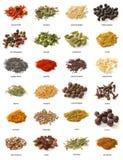 Olika kryddor på vit bakgrund. Royaltyfri Bild