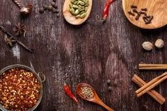 Olika kryddor p? m?rk brun bakgrund royaltyfri foto