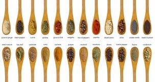 Olika kryddor som isoleras på vit bakgrund. Arkivbilder