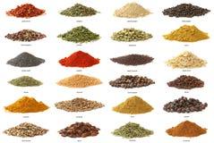 Olika kryddor som isoleras på vit bakgrund. Arkivbild