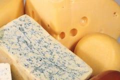 olika läckra typer för ost Arkivbild